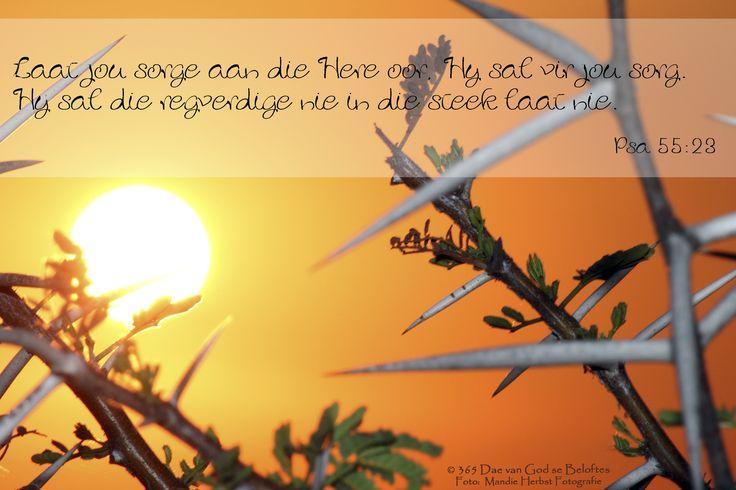 Bybelvers: Psalm 55:23 Laat jou sorge aan die Here oor, Hy sal vir jou sorg. Hy sal die regverdige nie in die steek laat nie.