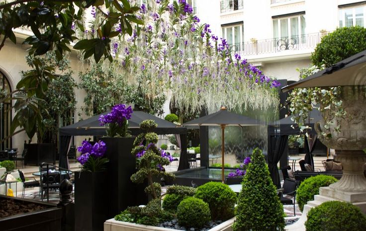 courtyards of paris - Google Search