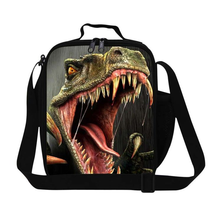 Dispalang Dinosaurs Insulated Lunch cooler Bags for Boys Small Animal Lunch Bags for Work Girls Lunch Box Container for School