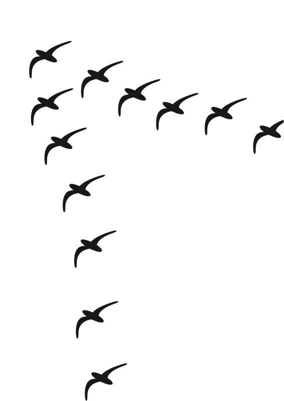 Gestalt Continuation example. This image of birds lead the