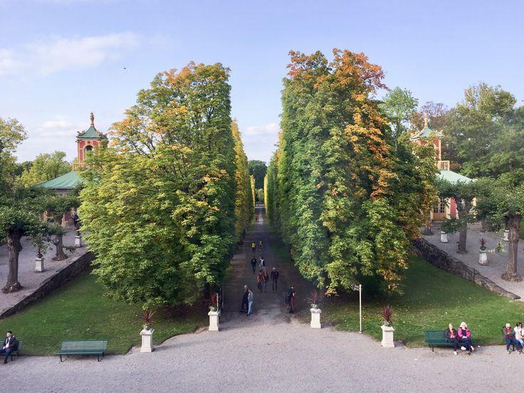 Visst går det att resa och upptäcka nya platser, även i ens egen stad – ett sådant ställe jag kan rekommendera är Drottningholm. Drottningholm befinner sig endast 20 minuter från city, men kä…