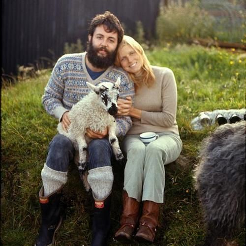 Paul, Linda, sheep.