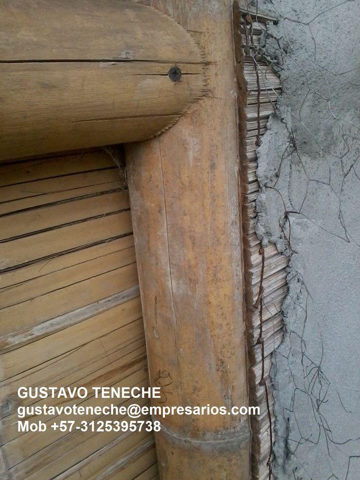 TALLER DE CONSTRUCCION Y SILVICULTURA DE LA GUADUA ANGUSTIFOLIA - gustavoteneche@empresarios.com