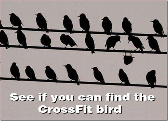 CrossFit Girls | Until Next Time, Eva