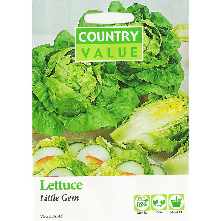 Country Value Little Gem Lettuce Seeds | Bunnings Warehouse