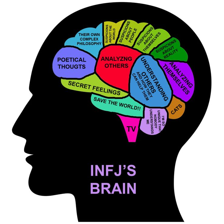"INFJ's brain....woah! How did they figure this out?...Although I would change the ""cat"" section to ""all animals"" so that my other pets would not be excluded :)"