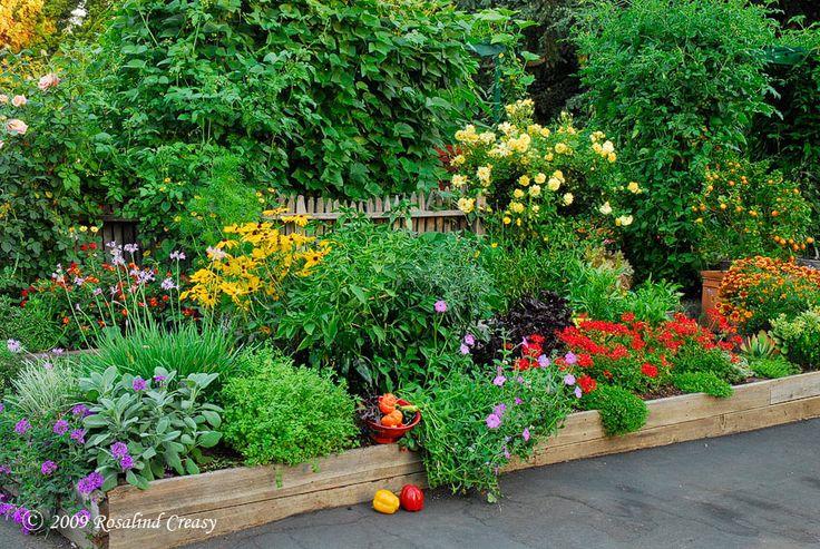 The 25 best edible garden ideas on pinterest flowers by for Edible garden ideas
