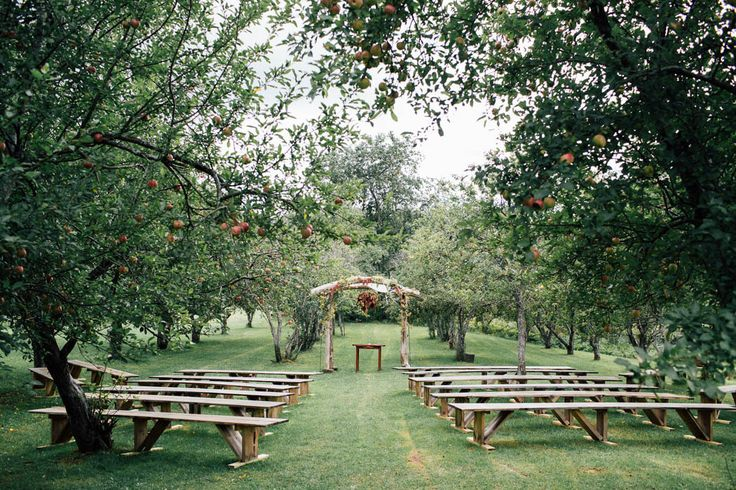 Fall orchard wedding ceremony | Image by Vafa Photography