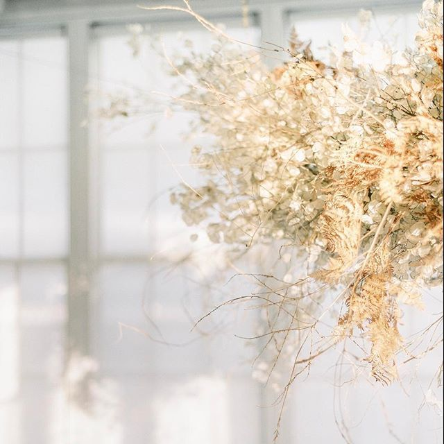 This floating installation was inspired by the desert. I wanted it to feel something like a desert dust cloud that was floating above the table (Put aside any visions of sand blowing into your eyes you may have just had. This was a very gentle desert dust cloud!). For this installation I used lunaria seeds, dried fern, and some tumbleweed that was foraged last minute-because I knew it would be perfect for creating a nice shape as soon as I saw it. Tomorrow is the first day of the free three…