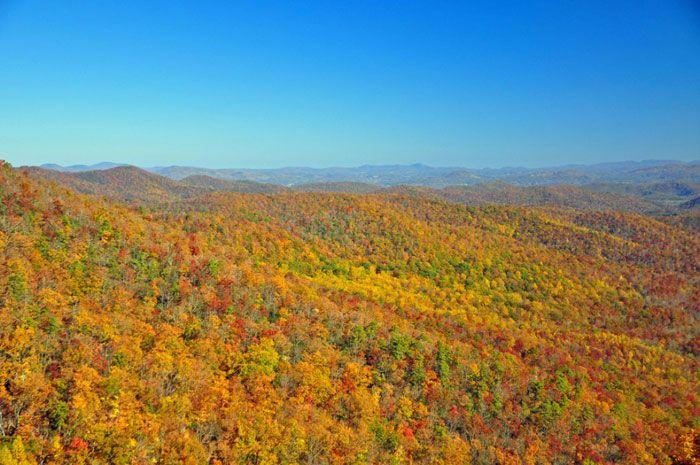 Asheville, Carolina del Norte