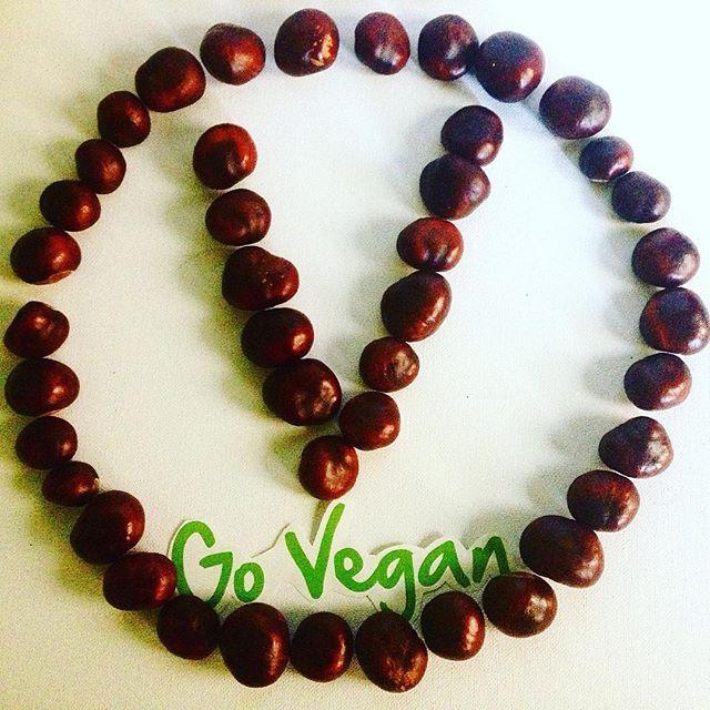 Conkers collected from a recent visit to Banbury #vegan #vegans #veganuk #govegan #vegansofig #vegansofinstagram #veganism #veganlife #veganlifestyle #veganrunner #veganlifestyle #veganathlete #vegano #veganfoodporn #veganfood #veganforlife #carbthefuckup #ctfu #801010 #rawtill4 #rawvegan #crueltyfree #meatfree #dairyfree #autumn  Yummery - best recipes. Follow Us! #veganfoodporn