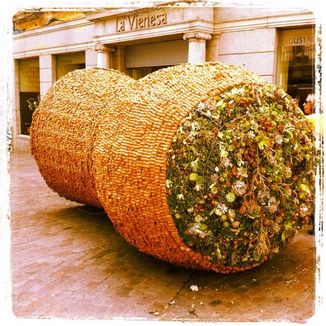 Tap XXL - Girona Temps de Flors #tempsdeflors