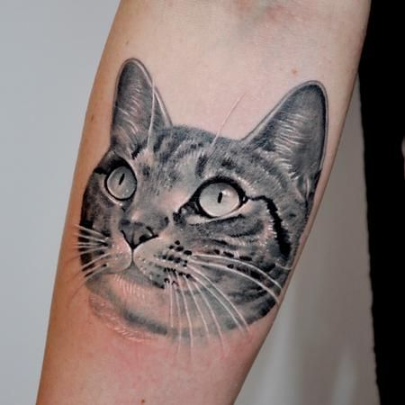 Nate Beavers - Black and Gray Cat Portrait Tattoo