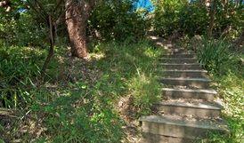 Stairs on The Coast walking track. Photo: John Spencer