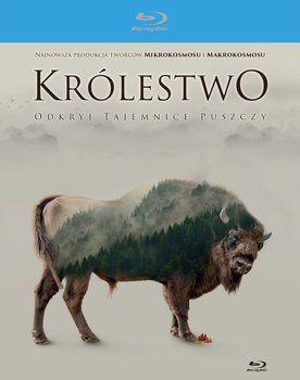 Królestwo (Blu-ray Disc) - Perrin Jacques  Filmy empik.com
