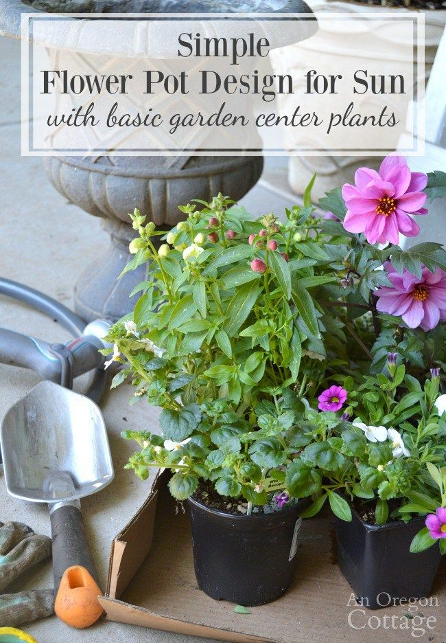 Looking for fun garden ideas? @anoregoncottage  has one for you! Learn how to make a unique flower pot design in a rustic gardening container. Click here for design recipes and tips.