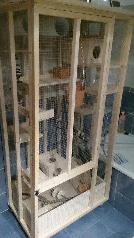 My custom Chinchilla cage. | chichilla | Pinterest