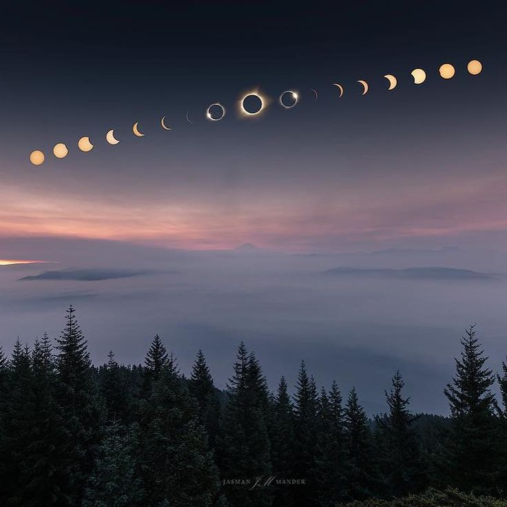 The Great American Solar Eclipse 2017 I'm loving seeing all the lunar eclipse photos - what a phenomenal act of nature to witness... here's a couple of my favourite pictures.