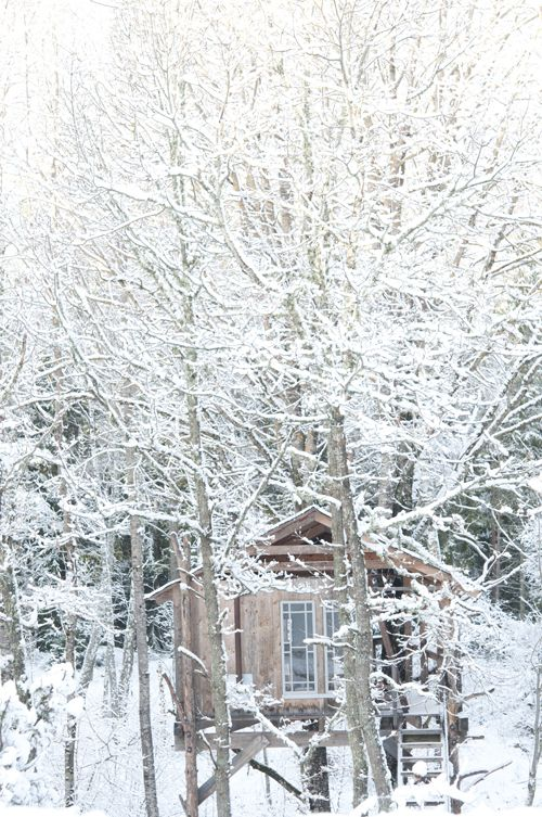 little treehouse in the winter