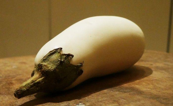 witte-aubergine