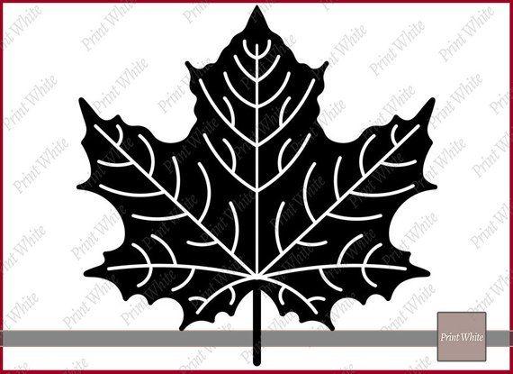 Leaf Svg Fall Leaves Svg Fall Svg Leaves Clipart Maple Leaf Etsy Leaf Clipart Autumn Leaves Leaf Silhouette