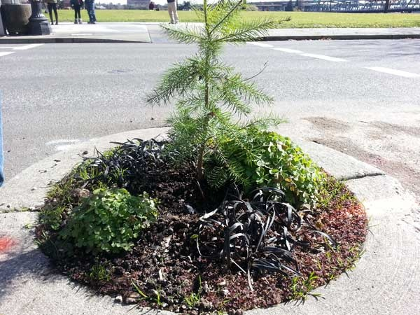 'World's Smallest Park' in Portland - Intersection of Southwest Naito Parkway and Taylor Street, near the Willamette River