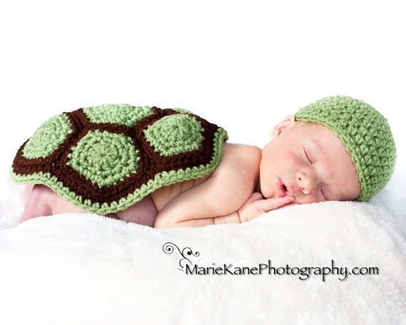 turtle turtle turtle things-i-love-3Turtles Shells, Ideas, Photo Props, Crochet, Turtles Turtles, Photos Props, Baby Photos, Baby Turtles, Turtles Baby