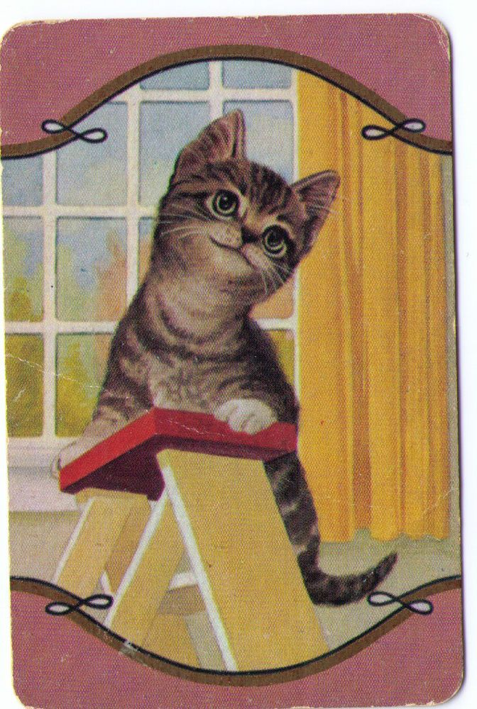 SWAP / PLAYING CARDS COLES UN-NAMED SERIES - CATS - TABBY CAT CLIMBING STEPLADDR sold $46.00 24/1/16