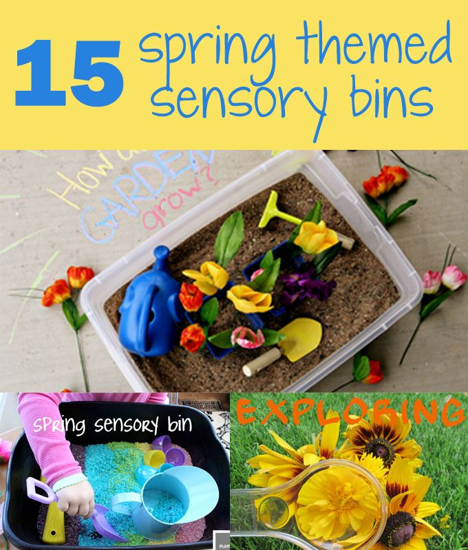15 Spring Themed Sensory Bins  I feel that this link gives great ideas for bringing sensory into the room, although I had a few of these ideas in my head it is always good to get other ideas and perspectives.