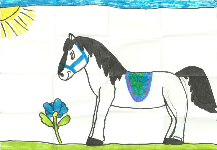 blue saddle on the horse