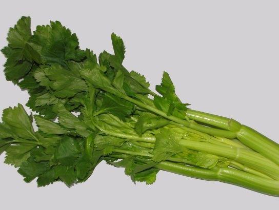 Recepty z řapíkatého celeru jsou vynikajícím oživením jakéhokoliv zdravého a také dietního jídelníčku. Tato zelenina totiž obsahuje vysoké množství vody a má nízký počet kalorií. Navíc obsahuje nerozpustnou vlákninu, vitamíny B a C, minerály jako jsou vápník, hořčík nebo zinek. A jakou přípravu této potraviny doporučujeme my?  Polévka z řapíkatého celeru Ingredience: 1/4kg řapíkatého celeru, 2 větší mrkve, 1 velká cibule, kousek zázvoru, trocha másla, 1l zeleninového vývaru, muškátový oř...