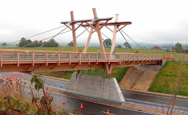 Timber Bridge Bridge Cable Stayed Pinterest Bridges