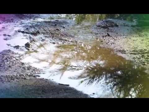 TUDOR GHEORGHE NICIODATA TOAMNA Simfonic Versuri Tudor Arghezi