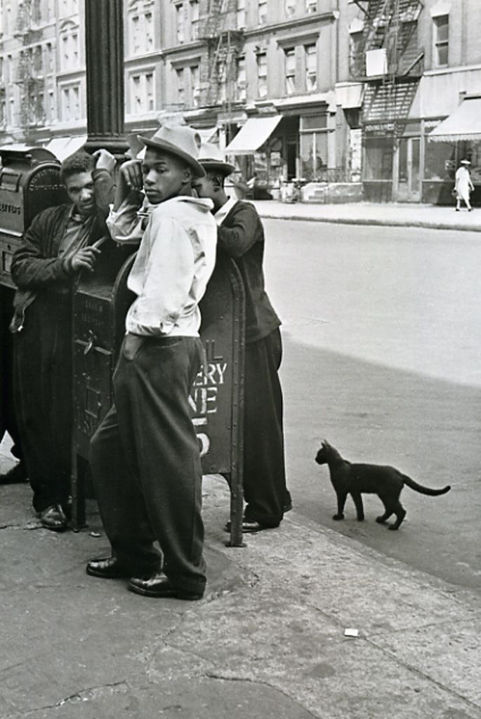 "Soul Looks  New York - Harlem New York - African American Vintage Photography. The ""random"" black cat accents everything!!!"