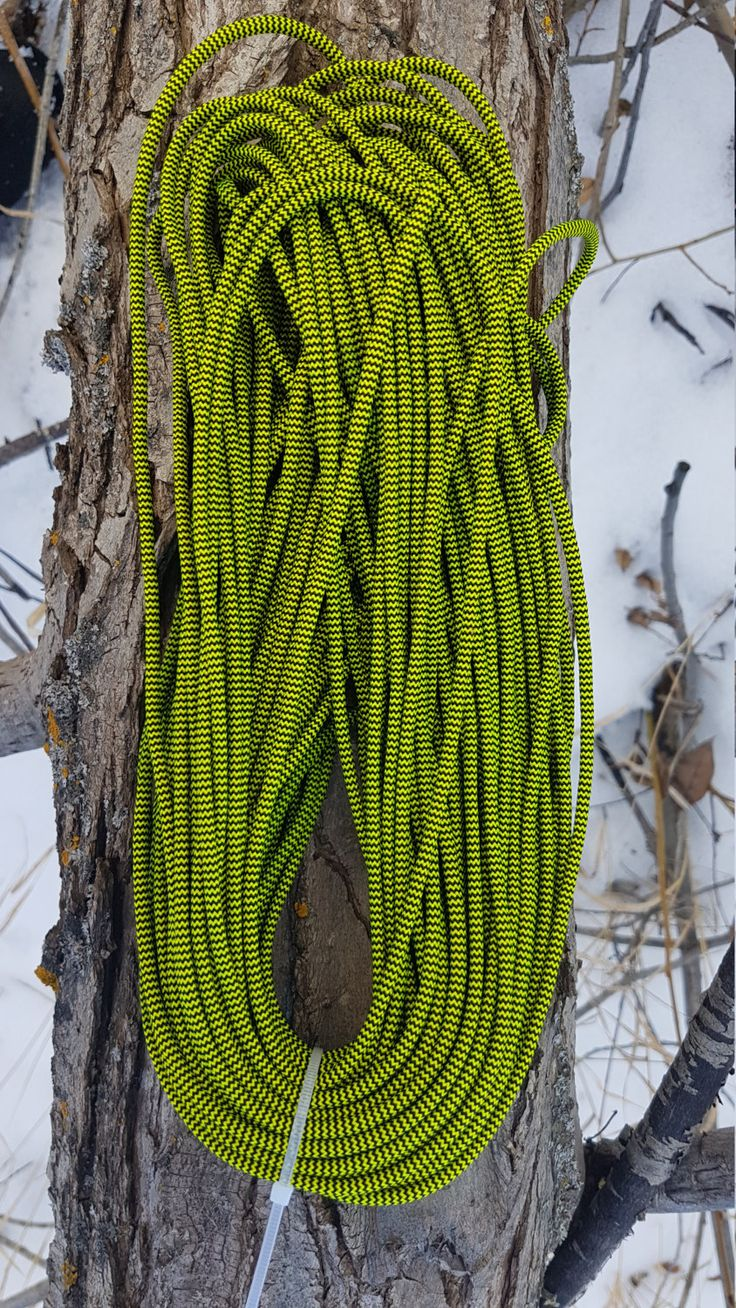 550 Paracord Type III 7 Strand Nylon Parachute Cord Made in the USA BumbleBee by BrodsParacord on Etsy