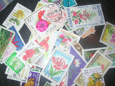 50 Flowers on stamps all different