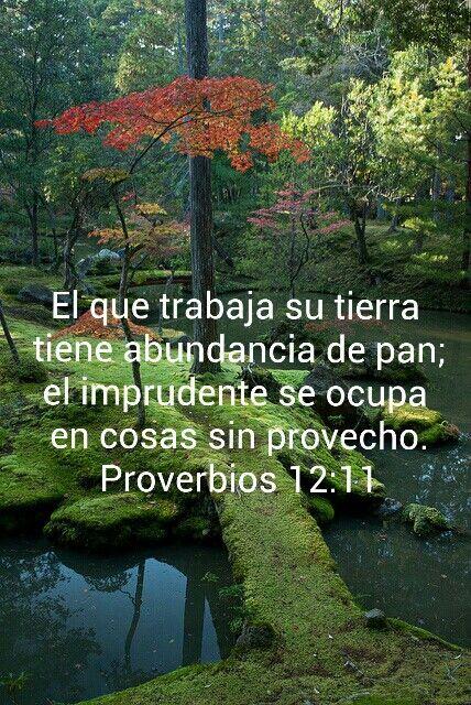 Proverbios 12:11