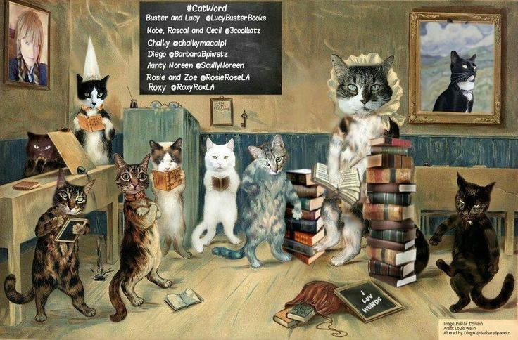School time for Weeti cats!