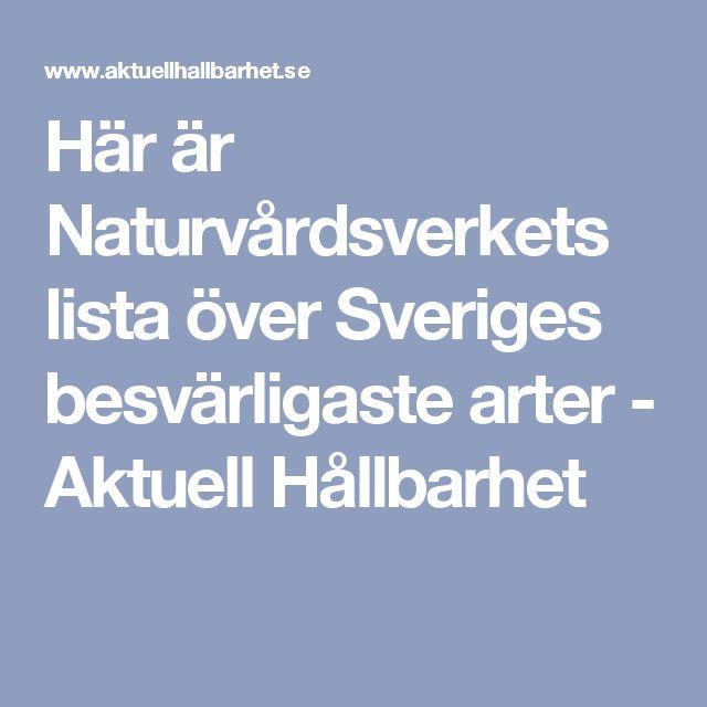 Här är Naturvårdsverkets lista över Sveriges besvärligaste arter - Aktuell Hållbarhet