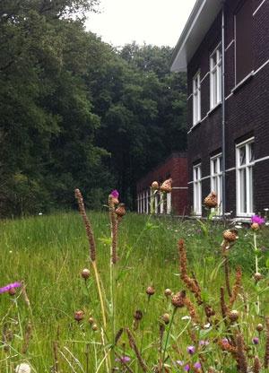 Ontwerp buitenruimte RCG Kind & Jeugdpsychiatrie op landgoed Veldwijk te Ermelo, door Vollmer & Partners