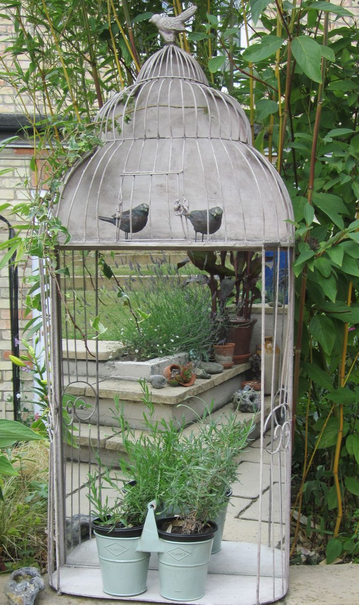 Where To Hang Garden Mirrors Bird Cages Amp Aviary