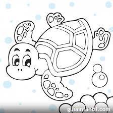 Resultado de imagen para dibujos de tortugas de mar para colorear