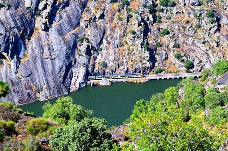 Trips through Douro River