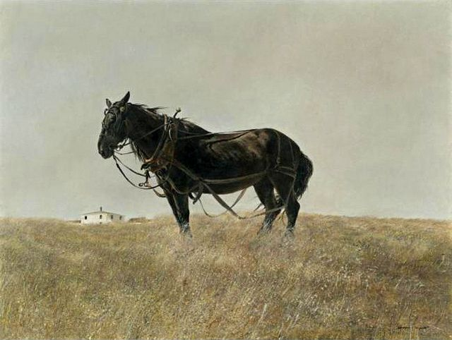 Andrew Wyeth 'South Cushing'  1955 tempera on panel by Plum leaves, via Flickr