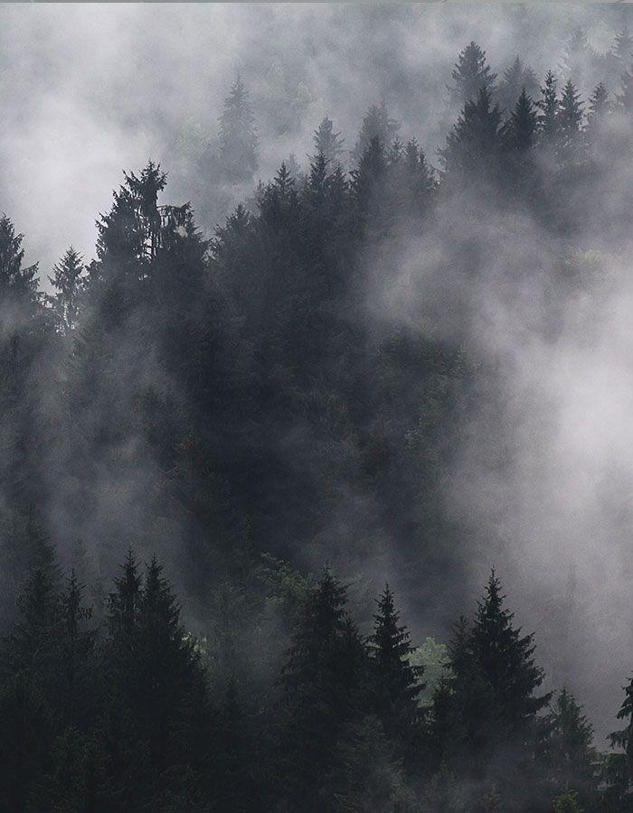 Wandern im Nebel: Interview mit Raus aus Berlin Interview mit Sina von Raus aus Berlin zum Wandern in Deutschland und international, auch bei Nebel.