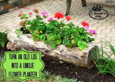 How to Make a Log Planter for Flowers ~ I promise that Spring really is coming :) What a great, rustic planter!
