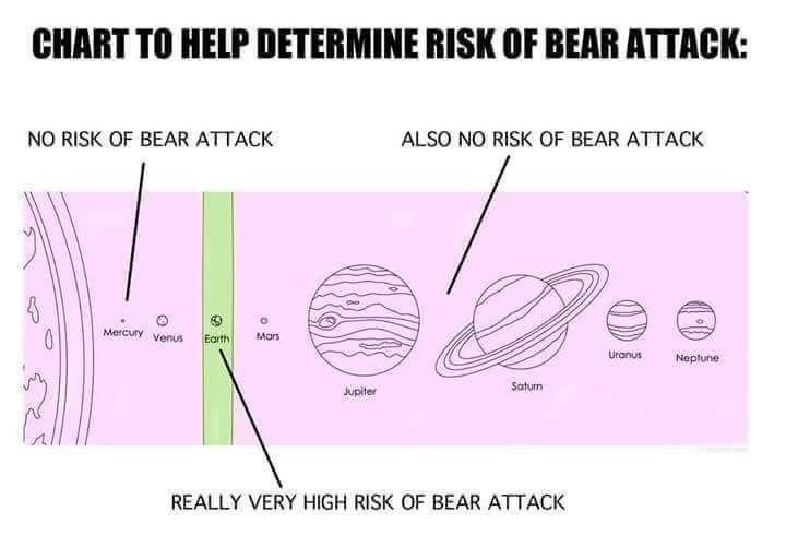 i dunno man, those space bears