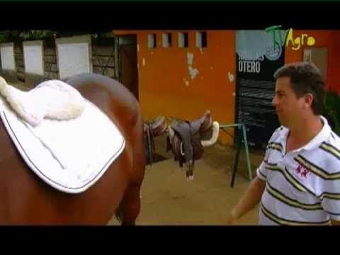 Saltando a caballo parte 2 por Juan Gonzalo Angel