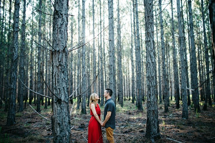 pine forest lifestyle photography