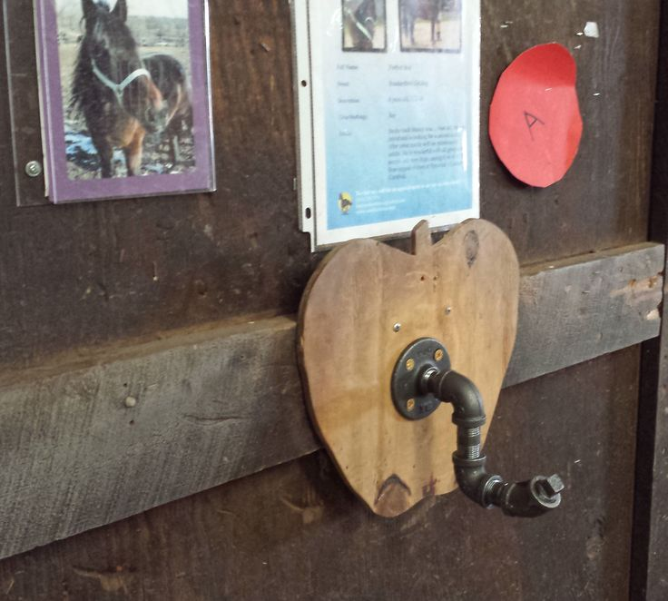 Horse proof halter hook